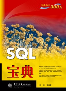 SQL宝典