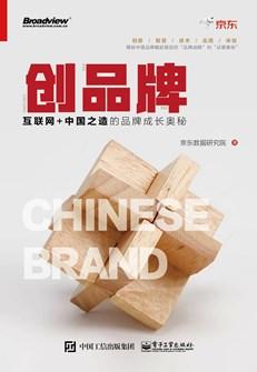 品牌战略:引爆互联网的中国品牌运营故事