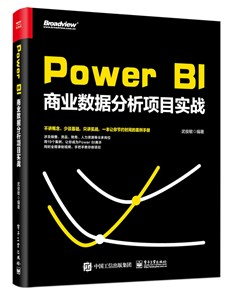 Power BI商业数据分析项目实战
