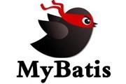 了解MyBatis——让开发更简捷与规范